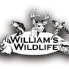 williams wildlife lodge